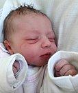 Nora Nováková se narodila 7. května 2018 v 1.55 hodin mamince Tereze Chýlové z Litvínova. Měřila 48 cm a vážila 3,35 kilogramu.