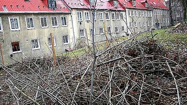 Hromady větví v Osadě.