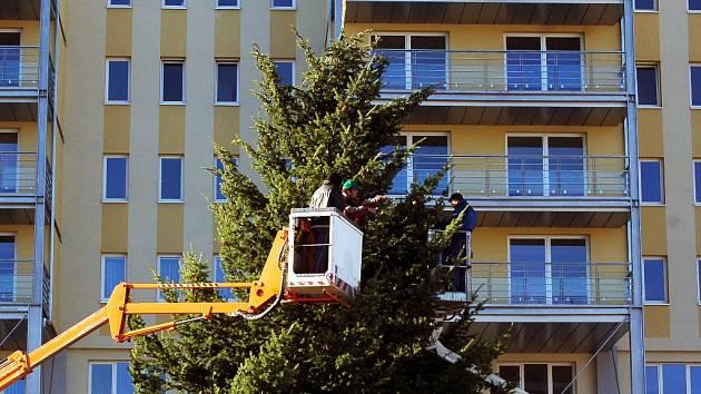 Hlavní vánoční strom v Mostě bude opět na 1. náměstí.