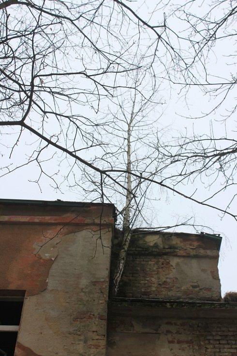 Areál bývalé polikliniky v Litvínově.