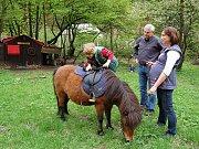 Majda ukazuje, jak umí lézt na koně.