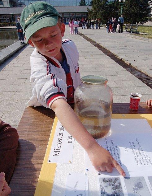Děti plnily určené úkoly.