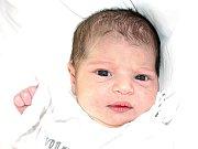 Mamince Romaně Bažové z Mostu se 15. dubna ve 13.10 hodin narodila dcera Šenil Bažová. Měřila 47 centimetrů a vážila 2,96 kilogramu.