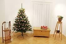 Výstava netradičních vánočních stromků v Litvínovském zámku.