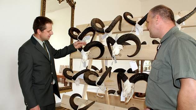 Stovka mysliveckých trofejí byla k vidění v mosteckém muzeu