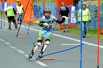 Závody Světového poháru v inline alpine slalomu v Meziboří