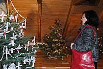 I letos se bude konat tradiční výstava vánočních stromků v Radničním sklípku.