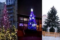 Vybíráme nejkrásnější strom Mostecka.