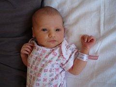 Mamince Vendulce Stupkové se 30. června v 9.55 hodin v Mostě narodila dcera Adélka Ziková. Měřila 54 centimetrů a vážila 3,82 kilogramu.
