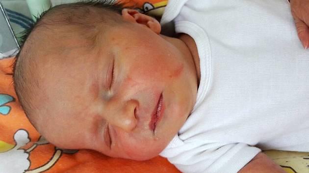 Marie Petříková se narodila mamince Evě Kubrichtové z Litvínova 2. března 2017 ve 12.45 hodin. Měřila 53 cm a vážila 3,67 kilogramu.