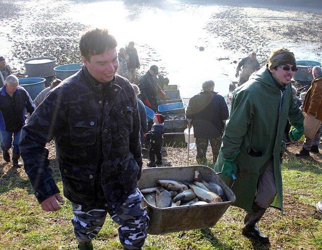 Výlov Nemilkovského rybníku.