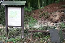 Spadlý strom poničil informační tabule na Tesařově cestě.