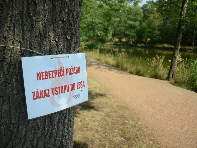 V Mostě platí zákaz vstupu do lesů Hněvín, Ressl a Široký vrch. Lidé tam chodí dál.