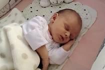 Kristýnka Holubová se narodila dne 13. 10. ve 20.06 hodin mamince Janě Ilenčíkové ze Žatce v Nemocnici Kadaň. Měřila 52 cm a vážila 3,44 kg.