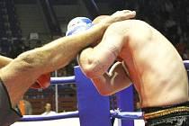 Kopnutí do hlavy je bolestivé i pro kicboxery.
