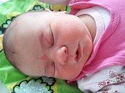 Nela Krčmariková se narodila mamince Elišce Krčmarikové z Bíliny 18. listopadu 2018 v 18.15 hodin. Měřila 56 cm a vážila 4,33 kilogramu.