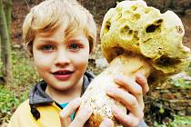 Pětiletý Pavlík Fazekaš našel v Lomském lese na Mostecku obří bilý hřib vážící 2 kg. Snímek je z roku 2006.