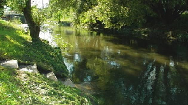 Řeka Bílina