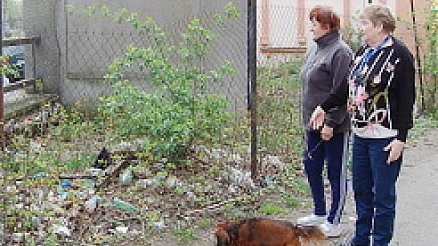 Helena Staňová (vlevo) s Martou Hlavatou si stěžují na nepořádek v jejich ulici. Daří se tam i krysám.