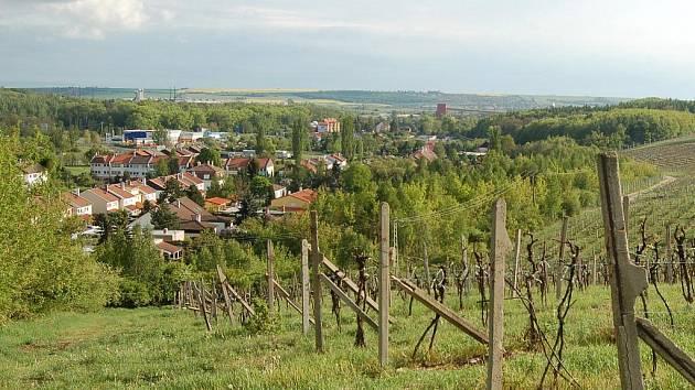 Vinice nad Čepirohy.