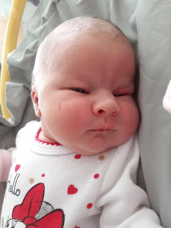 Eliška Janouškoucová se narodila mamince Kristýně Diblíčkové z Mostu 19. prosince ve 22.30 hodin. Měřila 50 cm a vážila 3,56 kilogramu.