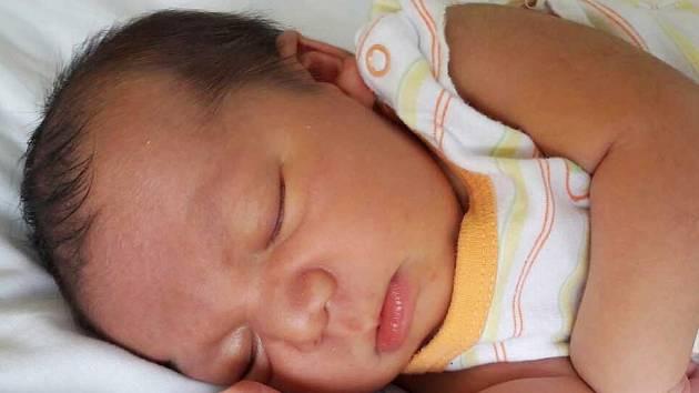 Tomáš Godl se narodil 7. července 2017 ve 20.50 hodin mamince Lucii Godlové z Mostu. Měřil 52 cm a vážil 3,98 kilogramu.