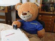 Plyšový medvěd, ilustrační foto.