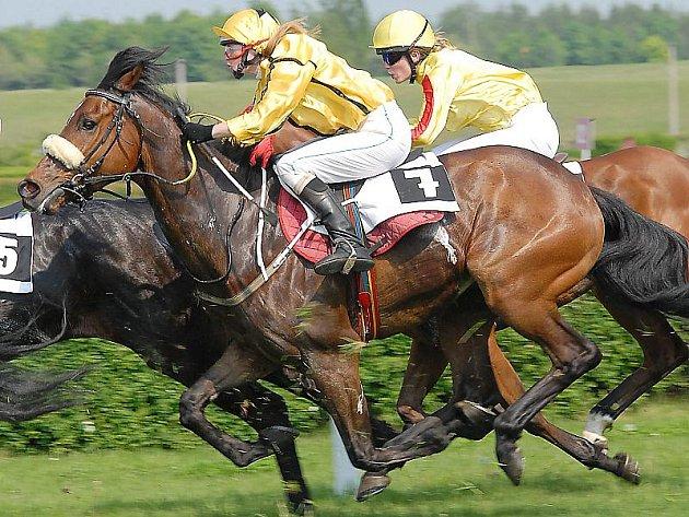 V sobotu se příznivci koní v Mostě mohou těšit na druhé letošní dostihy.