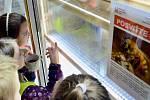 V mostecké knihovně otevřeli Naučnou včelí stezku