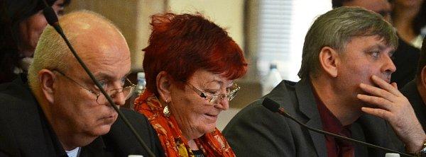 Hana Jeníčková