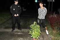 Strážníci a zadržená květina marihuany.