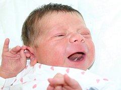 Mamince Monice Baumannové z Mostu se 12. května v 18:07 hodin narodil syn Lukáš Baumann. Vážil 4,18 kilogramu a měřil 55 centimetrů.