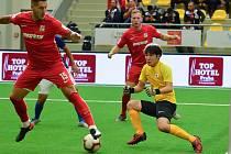 Čeští reprezentanti si poradili s Japonskem.