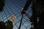 V parku Šibeník už vyrostla rozhledna a další části 3D bludiště