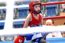Mezi talentované mladé mostecké boxery patří například Dominik Štěpánek (na snímku), který společně s Jiřím Chalupou, Jaroslavem Kramlem, Pavlem Rousem, Martinem Bártkem, Miroslavem Daněm a bratry Jankujovými a Kotlárovými boxuje v kategorii mládeže.
