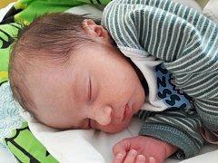 Adéla Jünglingová se narodila 1. února 2018 v 7.25 hodin mamince Gabriele Jünglingové z Obrnic. Měřila 45 cm a vážila 2,3 kilogramu.
