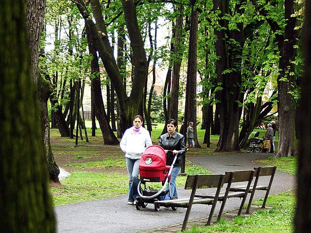 Zámecký park v Litvínově.