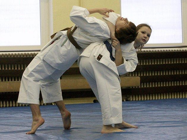 Mostecká škola bojového umění All Kampf Ji-tsu se v exhibici prezentuje školákům.
