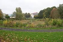 Pilařský rybník.