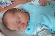 Richard Vlček se narodil 28. srpna v 11.27 hodin rodičů Veronice a Karlu Vlčkovým z Ústí nad Labem. Měřil 47 cm a vážil 2,94 kg.