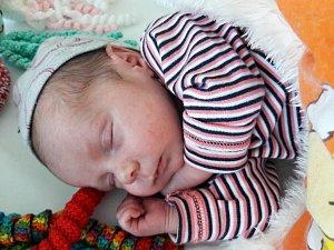 Anna Dobročková se narodila 22. dubna 2018 ve 14.18 hodin mamince Lence Brádkové z Hrušovan. Měřila 46 cm a vážila 2,47 kilogramu.