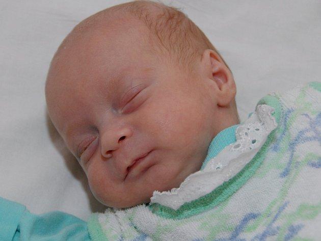 Pavel Vošahlík se narodil mamince Denise Vošahlíkové 18. září v 19.36 hodin. Při narození vážil 1,19 kg a měřil 38 cm.