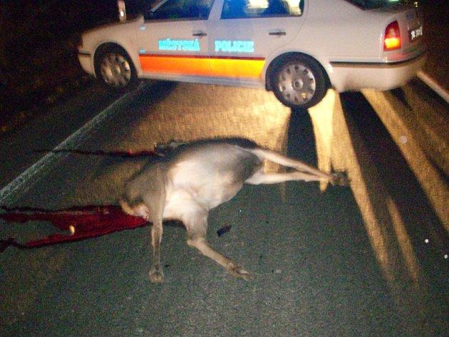 Městská policie zajišťuje místo nehody, aby nedošlo k další havárii.