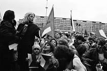 Sametová revoluce v Mostě, generální stávka 27. 11.