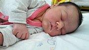 Sofie Kollárová se narodila 26. srpna 2017 ve 23.25 hodin mamince Veronice Petrášové z Mostu. Měřila 52 cm a vážila 3,85 kilogramu.