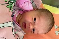 Viktorie Tauche se narodila 20. května v 19.21 hodin mamince Jitce Tausche. Měřila 50 cm a vážila 2,74 kg.