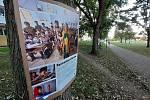 Výstava na stromech v parku mezi mosteckým Sputnikem a knihovnou