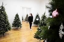 V Litvínovském zámku je výstava Vánoce po celý rok.