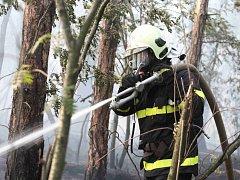 Hasiči zasahují u požáru lesa Ressl v Mostě