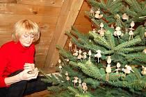Na tradiční vánoční výstavě hledají lidé inspiraci k neobvyklé výzdobě vánočních stromečků. Třeba pomocí makovic.